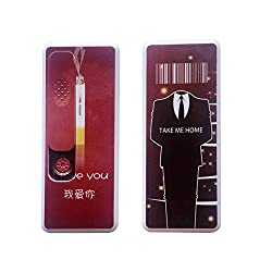 Madsbag USB Powered Compact Portable Rechargeable Flameless Electronic Cigarette Lighter With LED - Take Me Home (Red)