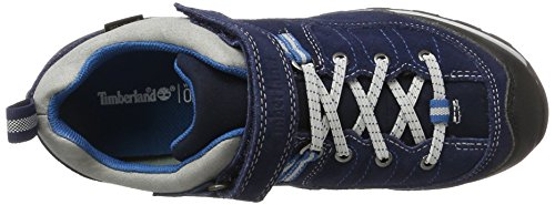Timberland Kid s Griffin Park Goretex Waterproof Oxford  Blue  Black Iris   3 5 UK