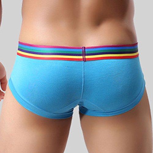 Panegy Herren Slip Unterwäsche bunt Bund atmungsaktiv Unterhose Slip Männer Shorts Boxer Unterhosen Briefs underwear Größe Farbe Wählbar Blau