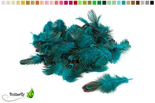 3g Fasanenfedern ca. 3-8cm (dunkel türkis 340D)//Bastelfedern Vogelfedern Schmuckfedern Natur Fasan Federn Deko ca. 130-140 Stück