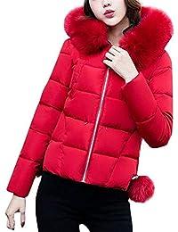 Winterjacken Damen Reduziert Kurz Elegante Warme Daunenjacke Mit Fellkapuze  Hochwertigem Fashion Mode Marken Outdoor Langarm Zip 2cc281c9fb