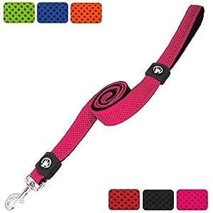 DDOXX Hundeleine aus Air-Mesh 120 cm   Hand-Schlaufe   für große, mittelgroße, mittlere & kleine Hunde   verschiedene Farben & Größen   Flexi-ble Hunde-Leine   Pink, M - 2,5 x 120 cm