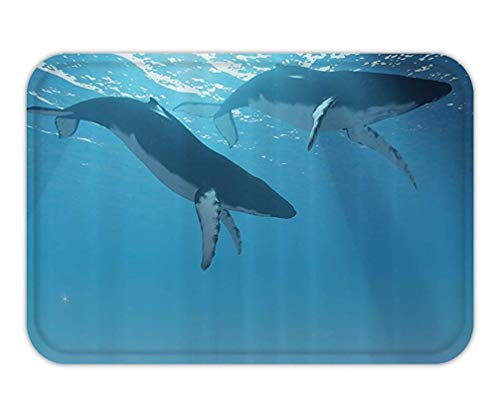 Oval Rug Collection (CHKWYN Doormat Ocean Decor Collection Two Humpback WhaleSwim Near The Ocean Surface in The Light Rayfrom The Sun Picture Polyester Fabric Bathroom Long Dimgray Ligt Blue.jpg 15.7X23.6 Inches/40X60cm)