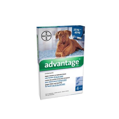 advantage-400-hunde-4-pipetten-von-4-ml
