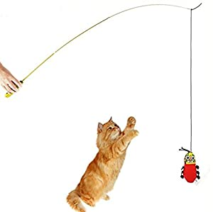 Kingken Funny Interactive Naturel Rétractable Mint Baguette télescopique d'entraînement jouet pour chat