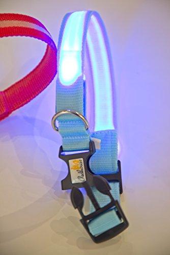 NEU Hundehalsband, -LR- LED mit neuem Lithium-AKKU, über 500x wieder aufladbar!!! , Das Leuchthalsband für ganz lange Zeit, nie mehr Batterien kaufen von PEDHOUSE (L, ROT) L: Halsumfang: 45-52cm - 6