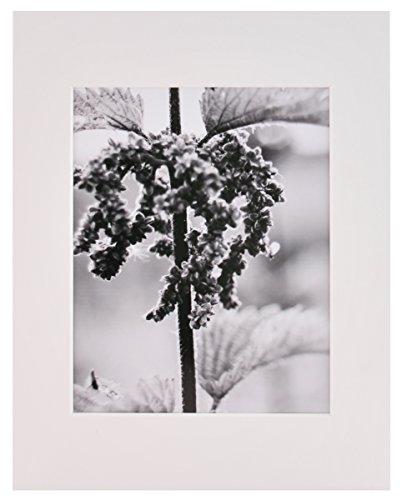 Nielsen Bainbridge 27,9x 35,6cm Artcare Künstlermappe (weiß vorgeschnittenen Matte mit 20,3x 25,4cm Center Öffnung
