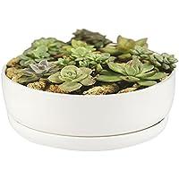 Vaso da fiori, Smater moderno bianco ceramica vaso rotondo per piante per fiori decorativo