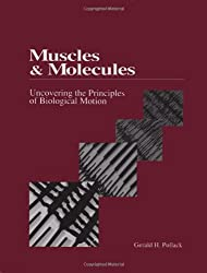 Muscles and Molecules: Uncovering the Principles of Biological Motion