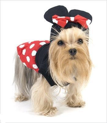 Puppe Love Maus Minnie Kostüm für Hunde–Größe 5(35,6cm -