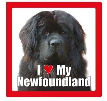 I love my dog Keramik Fotografien quadratisch Untersetzer mit Rasse Name Newfoundland
