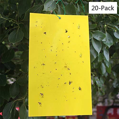 TJW Double Face Fly Pièges étanche Jaune Sticky Pièges pour Flying Plante Insectes pour Fly pour Animal Domestique (15,2 x 20,3 cm) 20 Pack