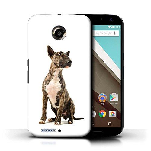 Kobalt® Imprimé Etui / Coque pour Motorola Nexus 6 / Cocker Spaniel conception / Série Chiens Bull Terrier