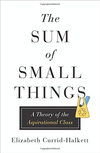 Sum of Small Things: A Theory of the Aspirational Class por Elizabeth Currid-Halkett
