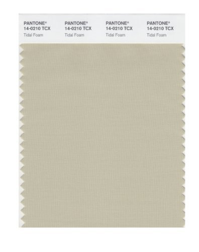 pantone-smart-14-0210x-color-swatch-card-tidal-foam-by-pantone