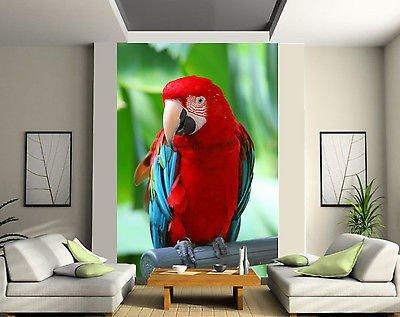 stickersnews-carta-da-parati-in-2-tappeto-tappezzeria-murale-decorativa-a-forma-di-pappagallo-rif-11