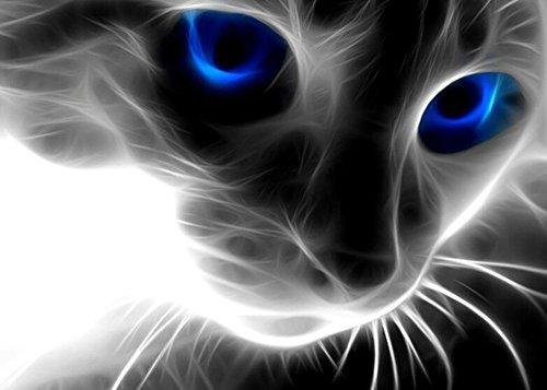 txhf 5D DIY Diamant Malerei, nacola Strass Bilder der Kristalle Stickdecken Arts-Basteln & Nähen Kreuzstich (schwarz weiß Katze Maße 40x 30cm