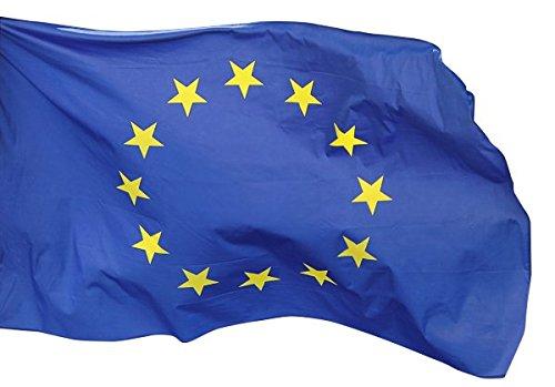 Aricona Europa Fahne 90 x 150 cm EU Flagge Europäische Union, aus Stoff mit Doppelt umsäumten Fahnenrand, 2 Messing-Ösen Zum Hissen, für Fahnenmast (Ohne Stab) 12 Sterne Europaflagge Nationalflagge