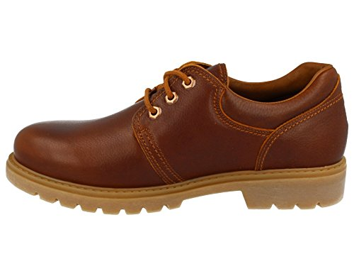 PANAMA JACK marrone scarpa 02 C17 Marrone