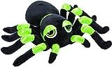Unbekannt Li'l Peepers 14390 grϋne Tarantel Spinne, 13 cm, Kuscheltier von Suki Gifts