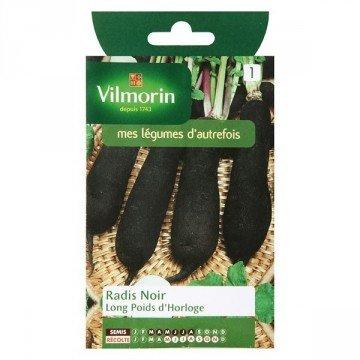 Vilmorin - Sachet graines Radis noir long poids d'horloge