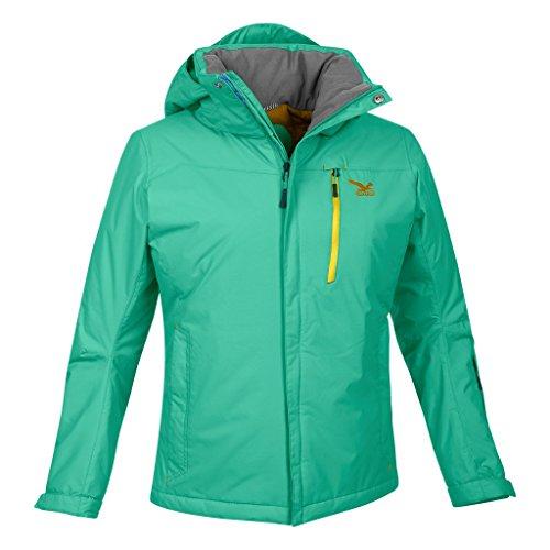 SALEWA Damen Jacke Roa PTX/PF W Jacket Libellule/2500