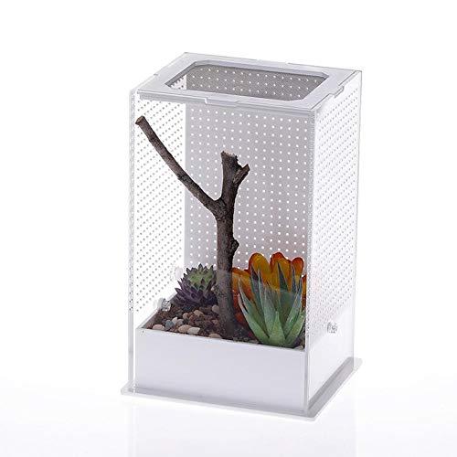 goforwealth Reptile Alimentazione Box Scatola di Alimentazione Acrilica Mantis Scatola di Allevamento Mantis Scatola di...
