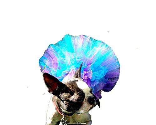 WangsCanis Haustier Hund Gaze Rock Tutu Halloween Party Kostüm Kleid Outfit Katze Prinzessin Kleiner Kleidung (Lila mit Blau)