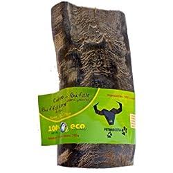 Cuerno de Búfalo para perros - 100% Naturales. Talla M (Mediano)