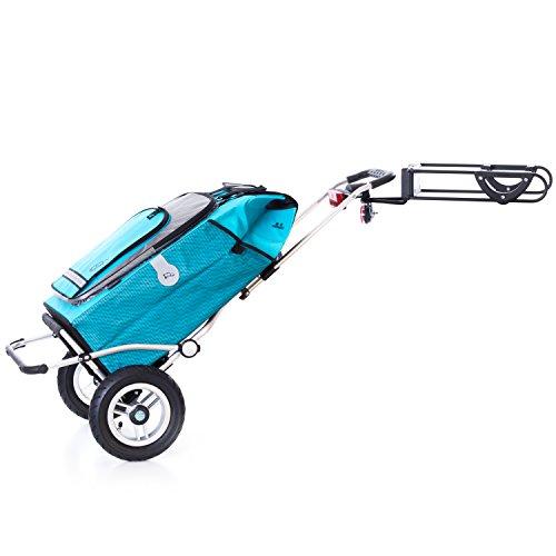 SparSet Einkaufstrolly Royal Hydro luftbereift Fahrrad
