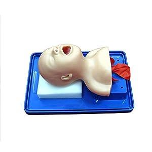 Star Eleven Electronic Erwachsenen-Trachea Intubation Training Modell Halsstütze, Intubation Head Modell mit Alarm Gerät