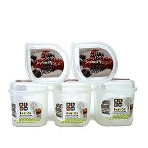 Rotho Joghurtbox yaourt 5 x Boîte alimentaire Lunch Box Boîte en étain Idéal pour emporter avec vous