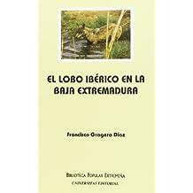 Lobo iberico en la baja Extremadura, el