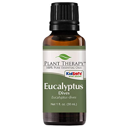 Plant Therapy Eucalyptus Dives (Peppermint) Essential Oil 30 mL (1 oz) 100% Pure, Undiluted, Therapeutic Grade
