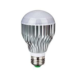 LUMISKY Ampoule LED RGB 5W culot E27 avec 1 télécommande