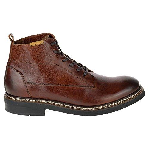 CAT FOOTWEAR Schuhe - Boots SUTTER - rust Rust