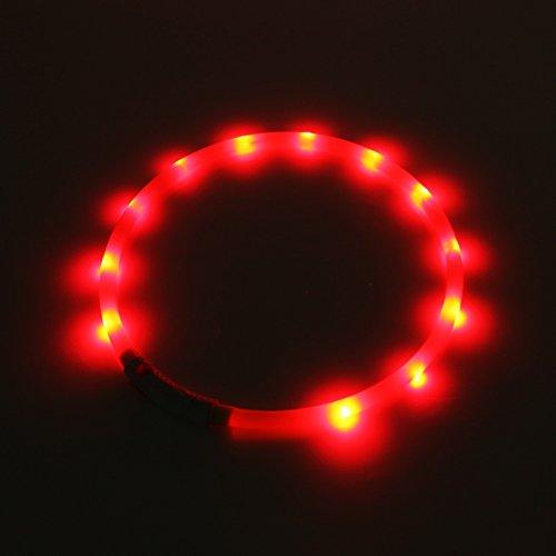 2-TECH LED Visio Leuchthalsband in ROT Deluxe für Hunde und Katzen universell kürzbar, Halsumfang bis 55 cm - 2