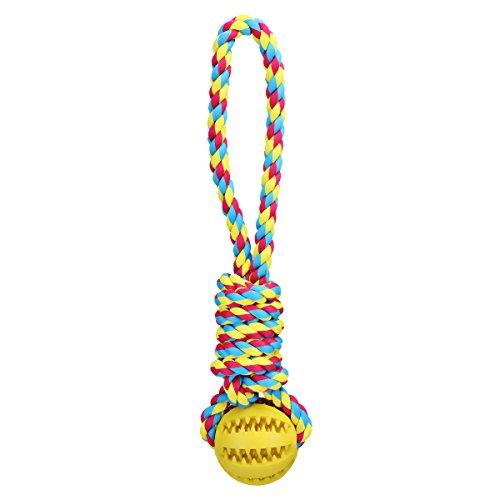 hundeinfo24.de Hundespielzeug Hundespielzeug Ball am Seil,Naturgummi,Saubere Zähne,Tauziehen Spiel, für Mittlere Hunde und Große Hunde