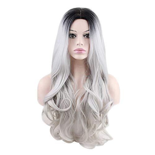 feiXIANG femmes dégradé gris haute qualité Perruque Pour femmes Perruque Cheveux ondulés Extensions de cheveux Long Complète bouclé ondulé Chaleur resistant Synthetique