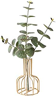 Nordic Simple Golden Glass Vase Iron Art Vase Hydroponic Plant Flower Vase Glass Test Tube Metal Plant Holder