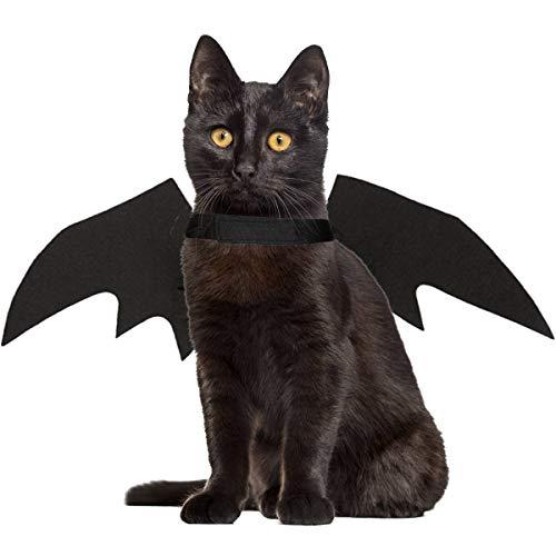 Haustier Katze Kostüm Für Halloween - LAWOHO Halloween Haustier Kostüm - Haustier