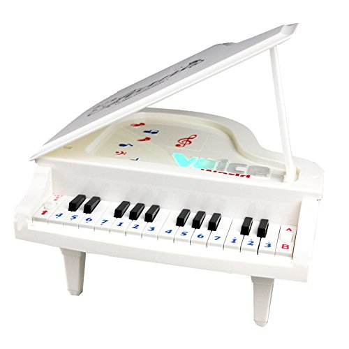 Fajiabao-Best-Birthday-Gift-Electronic-14-Keys-Little-Educational-Piano-Music-Keyboard-Game-Toy-Set-with-Light-and-Song-for-Children-Boys-Girls-Kids-Musical-Early-Learning