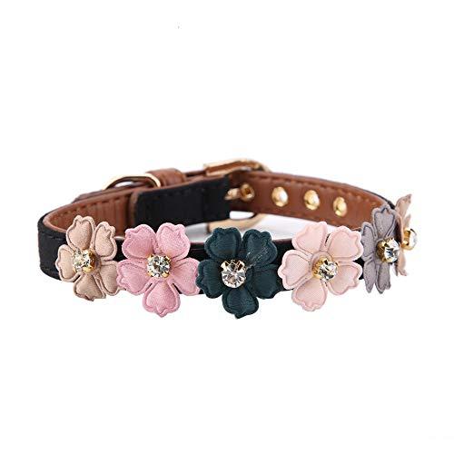 Pssopp Hundehalsband Fashion Flower Dekor Halsband Einstellbare Daisy Blumen Haustier Kragen PU Leder Hund Halsbänder für kleine Katze Hund(1.3 * 34cm-Schwarz) -