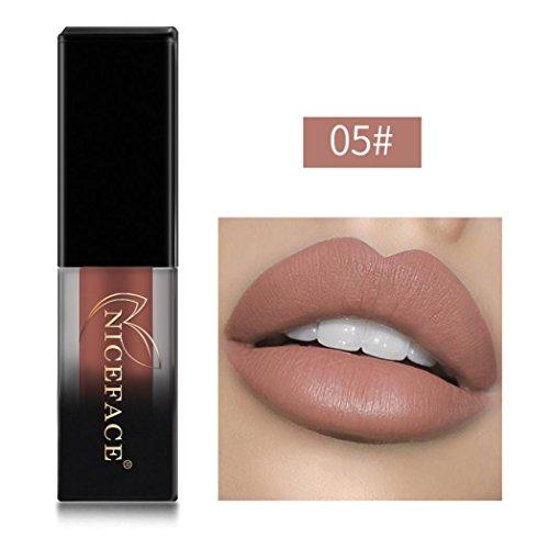 05 Matt (Huihong NICEFACE 18 Schattierungen matte Lippen Dessous flüssige Lippenstift, langlebig und wasserdicht. (Sexy 05))