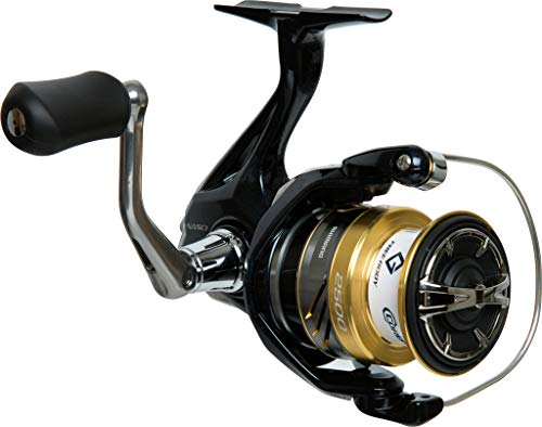 Shimano Nasci 2500 FB, Spinning Angelrolle mit Frontbremse, NAS2500FB