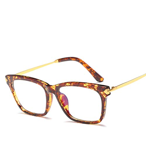 Mkulxina Vintage Frame Unisex Brille Computer Schutz Auge Computer Brille Männer Frauen (Color : Leopard)