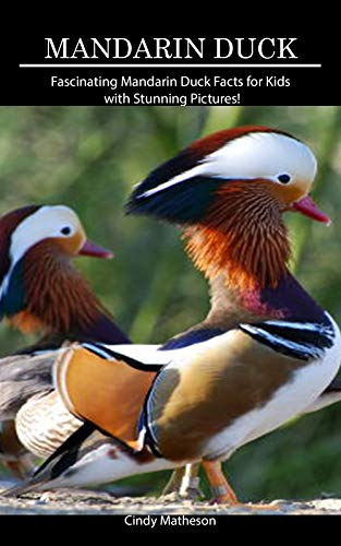 Descargar gratis Mandarin Duck: Fascinating Mandarin Duck Facts for Kids with Stunning Pictures! Epub