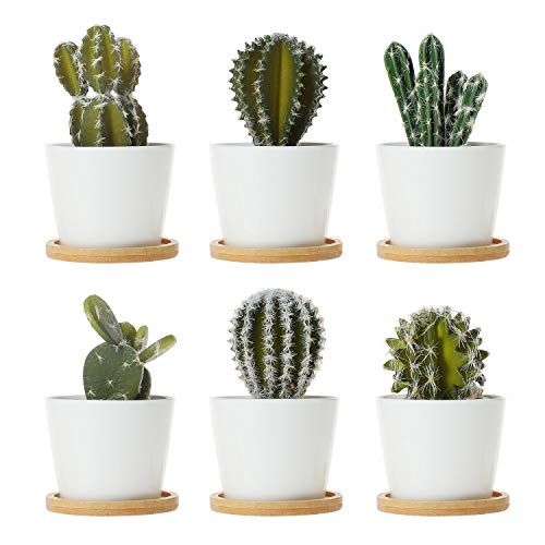 ComSaf Vaso per Pianta Grassa Vaso di Piante con Vassoio di bambù Bianco 8.5CM Ceramica Il Giro Set di 6, Fioriere di Cactus Contenitori Vasi di Fiori Decorativo del Desktop Davanzale Bonsai