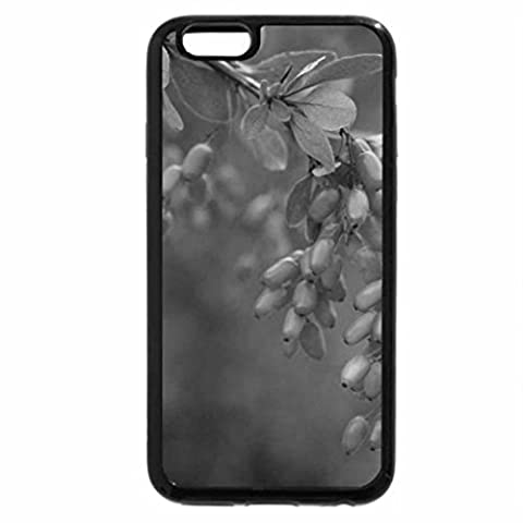 iPhone 6S Plus Case, iPhone 6 Plus Case (Black &