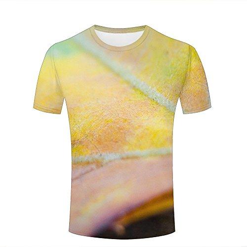 qianyishop 3d Print T Shirts Maple Leaf context Graphics Men Women Couple Fashion Tees A